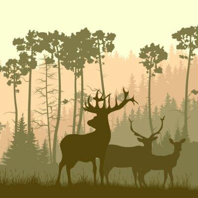 Naklejka Plac ilustracją dzikich łosi na skraju lasu.