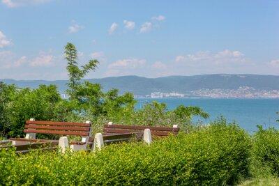 Naklejka Plants And Trees By Sea Against Sky