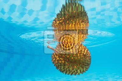 Podwodne tle egzotycznych owoców duriana Azji spiny