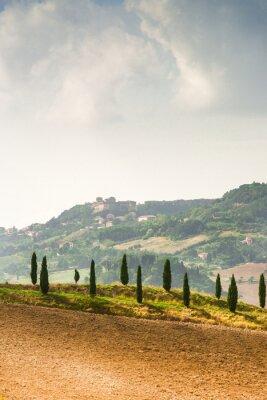 Naklejka Pola w Toskanii