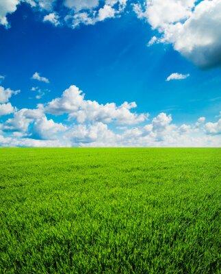 Naklejka pole