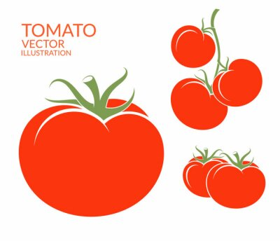 Naklejka Pomidor. Wyizolowane z warzyw na białym tle