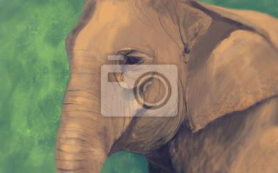 Portret słonia z abstrakcyjnym tle