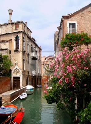 Portret Venice