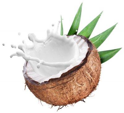 Naklejka Powitalny mleka kokosowego z wewnątrz.
