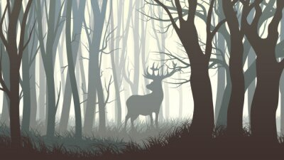 Naklejka Poziome ilustracji dzikie łosie w drewnie.