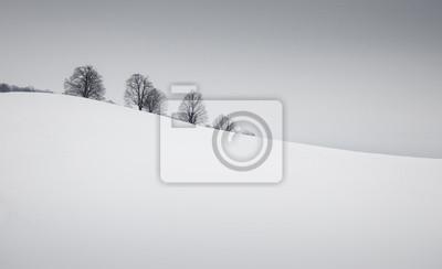 Prosty zimowy krajobraz z śniegu i drzew