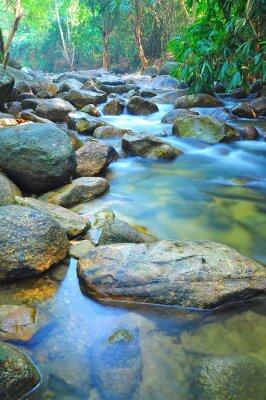 Naklejka Przepływ wody przez skały w płytkiej Stream w dżungli Malezji