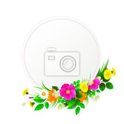Rama Flower białe tło zdobione mlecze, chamomiles, dzikiej róży, jaśminu.