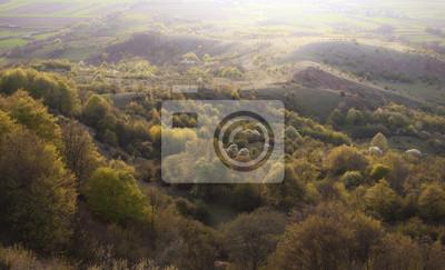 rano krajobraz z zielonych drzew i wzgórza na wiosnę