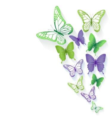 Naklejka Realistyczne Kolorowe Motyle samodzielnie na wiosnę
