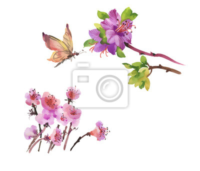 Ręcznie rysowane akwarela lato kwiaty z motyl.