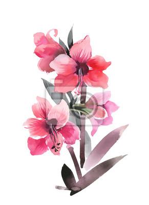 Ręcznie rysowane kwiaty na białym tle