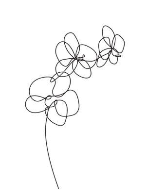 Naklejka Ręcznie rysowane kwiaty orchidei. Czarno-biały ilustracja wektorowa
