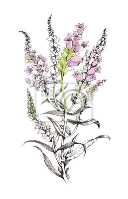 Ręcznie rysowane malarstwo z kolorowych kwiatów na białym tle.