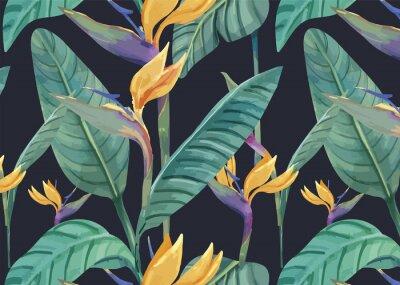 Naklejka Ręcznie rysowane ptak rajski wzór