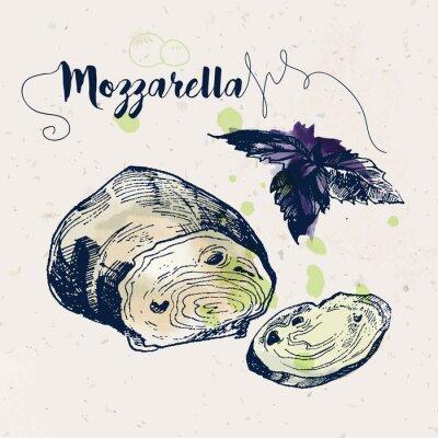 Naklejka Ręcznie rysowane ser mozzarella i bazylia liści