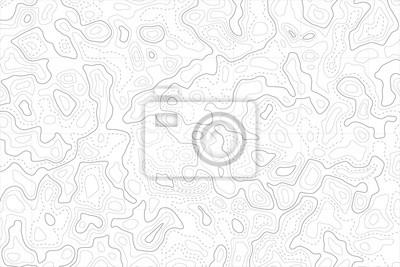 Naklejka Reliefowa mapa topograficzna obszaru z konturami wysokiego poziomu i siatką geodezyjną. Streszczenie tło linii vectror.
