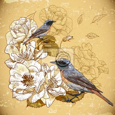 Rocznika tle kwiatów z ptaków