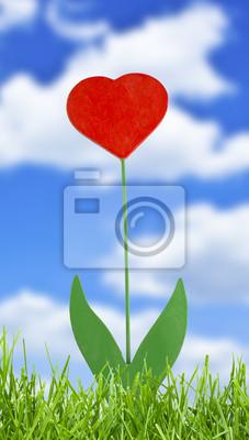 roślin, z sercem na tle nieba