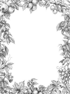 Naklejka Rysunek ołówkiem pionowej ramy owoców