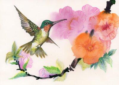 Rysunek pięknych jasnych ptaków i kwiatów