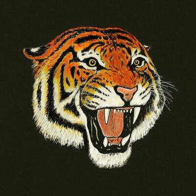 Naklejka Rysunek ryk tygrysa