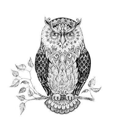 Naklejka Rysunek sowa z pięknymi wzorami
