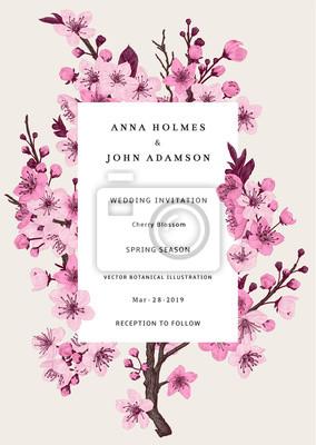 Sakura. Zaproszenie na ślub. Oddział różowy kwiat wiśni. Wektorowa botaniczna ilustracja.