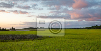 Naklejka Salt Marsh on the intracoastal waterway in Florida