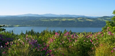 Naklejka Scenic View Of Flowering Plants By Mountains Against Sky