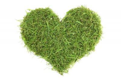 Naklejka Ścinki trawy w kształcie serca