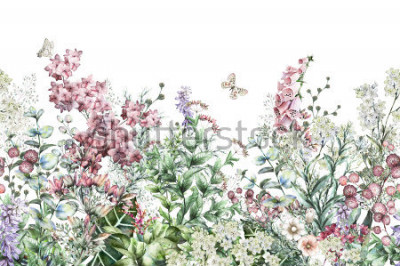 Naklejka seamless rim. Border with Herbs and wild flowers, leaves. Botanical Illustration Colorful illustration on white background. Spring composition with butterfly
