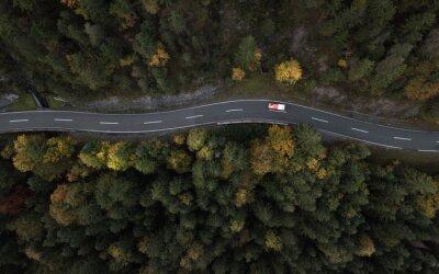 Naklejka seasonal mountain road leading into the forest