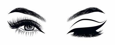 Naklejka Seksowne, mrugające luksusowe oko z doskonale ukształtowanymi brwiami i pełnymi rzęsami. Pomysł na wizytówkę firmy, wektor typografii. Idealny wygląd salonu.