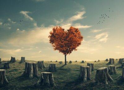 Naklejka Serce w kształcie drzewa w lesie rozjaśniająca