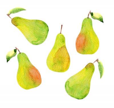 Naklejka set of pears isolated, watercolor