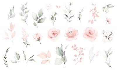 Naklejka Set watercolor elements of pink roses; collection garden flowers; leaves; branches. Botanic; illustration, eucalyptus; Wedding floral design
