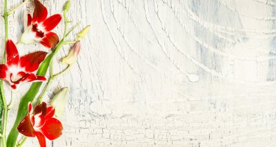 Naklejka Shabby chic tło z czerwonymi kwiatami orchidei, widok z góry, miejsce na tekst.
