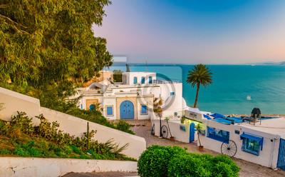 Naklejka Sidi Bou Said, słynna wioska z tradycyjnej Tunezji architektury. Zastrzelił słońca.