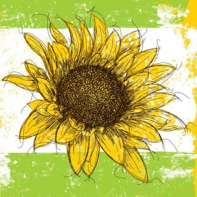 Naklejka Sketchy Słonecznik