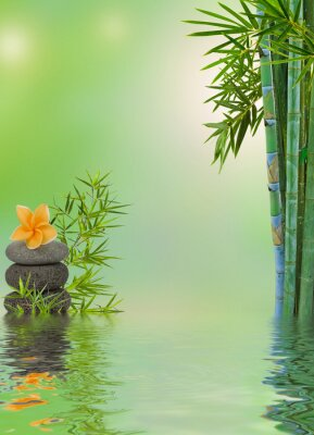 Naklejka Skład aquatique masaż relaksacyjny zen