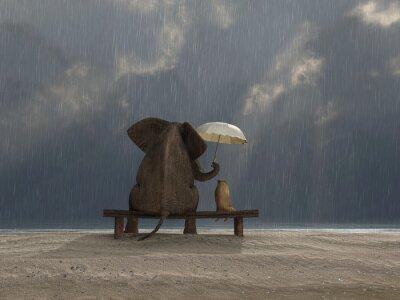 Naklejka słoń i pies siedzieć w deszczu
