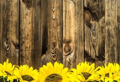 Naklejka Słoneczniki na starych drewnianych desek. Kwiaty tle z miejsca kopiowania