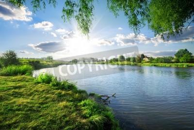 Naklejka Słoneczny dzień na spokojnej rzeki w lecie