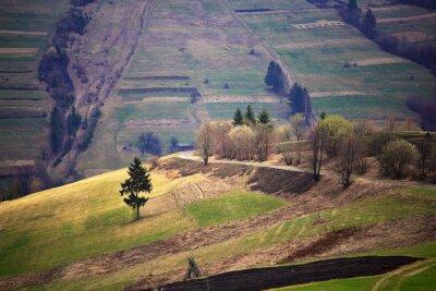 Naklejka Słoneczny wiosna w górskiej miejscowości. Pól i wzgórz