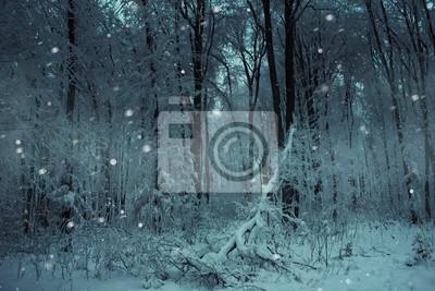 snow falling on trees in frozen forest in winter