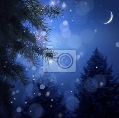 Snowy lasu w noc Narodzenia
