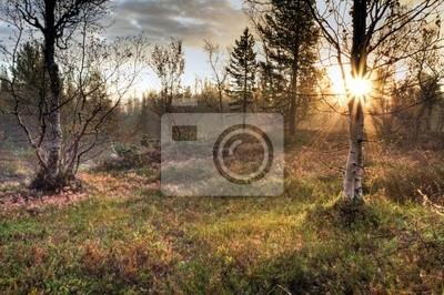 Sonnenaufgang im Herbst in Schweden