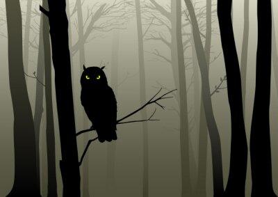 Naklejka Sowa w mglistym lesie